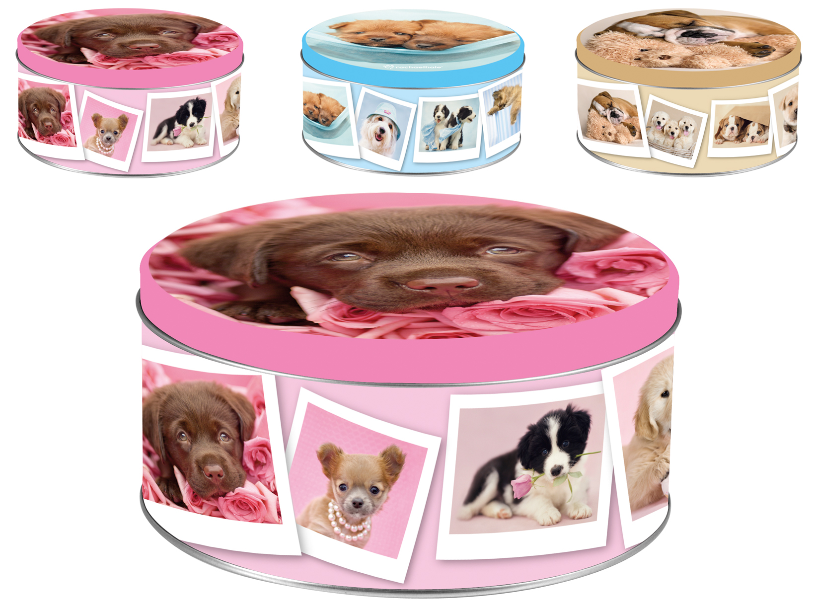 HOME Set 6 Boxes Tin Dogs Decoration Round Cm17Xh8 Jars Food Storage